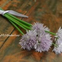 Flores de cebollino en la cocina